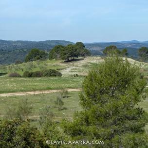 Estribaciones de Sierra Morena