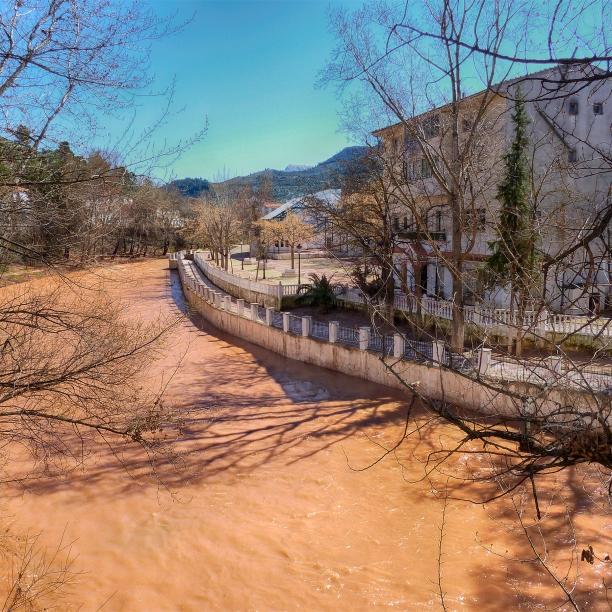 Desde el puente: aguas arriba